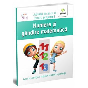Numere și gândire matematică