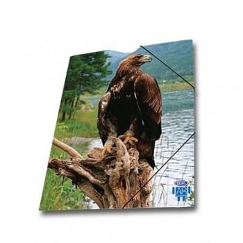 Mapa AR carton cu elastic Skag, 25 x 35 wild animals, vultur